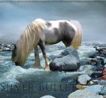 Silver Bullet MANIP by AnimereCreations