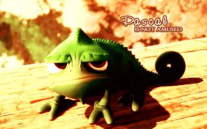 Pascal is Not Amused by kg1507