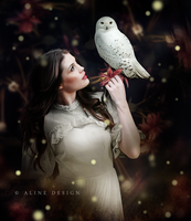 Mysterious Owl by AlineDesignBrasil