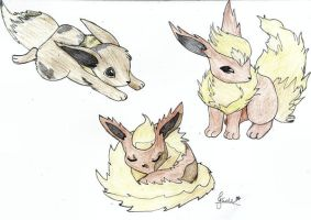 Eevee and the Flareons by princess06
