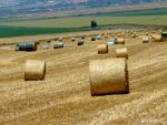 PALLETS OF STRAW 2 by almotsha2L