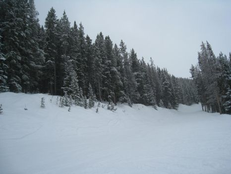 Snowy Vail by BlueArctic4
