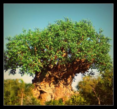 The Tree of Life by AllyCat1994