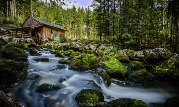 Old Mill by Hauns
