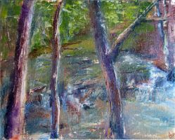 Trio of Trees and a Stream by CirAD