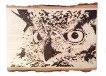 Great Horned Owl-pyrography by lost-nomad07