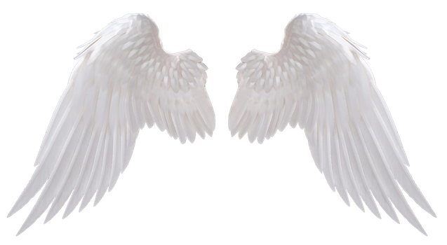 Angel Wings by HZ-Designs