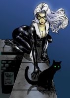 black cat by Raziel-Urnadine