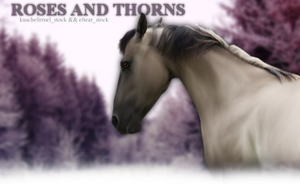 Roses and Thorns by TheKrowned