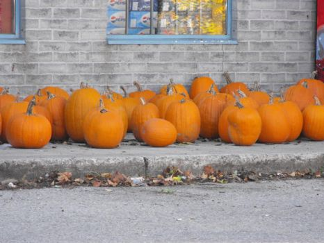 pumpkins. by ixi-dust