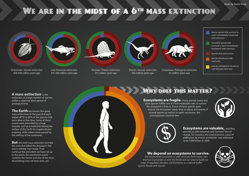 We are in the midst of a sixth mass extinction by Armonah
