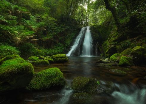 Cascading Delight by DrewHopper