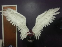 Upturned in flight large costume wings by TheGriffinQueen