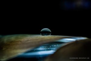 resting droplet by isischneider