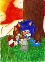 Gift:Sonic and Sally by Sonar15
