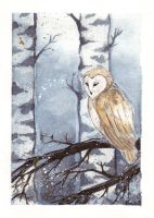 Winter Owl by Nanaowl
