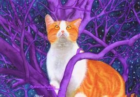 Mystery Kitty #3: Innocent Vision (Real Colors) by SlytherclawPadawan