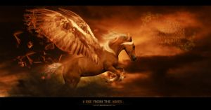 rise from the ashes by Horseryder