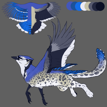 DT: Blue Jay Griffon by bolthound