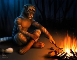 By The Campfire by Nimrais