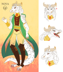 Dragonborn Princess by Jackie-lyn