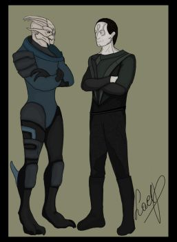 Turians and Cardassians by LaelP