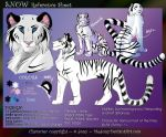 Snow reference sheet by MEJ0NY