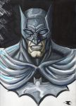 Recovery Time makes Batman angry! by BigRobot