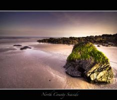 North County Seaside by Mfotografie