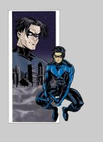 Nightwing by appleworms