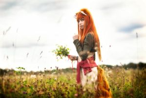 Horo in Field #3 by andrewhitc