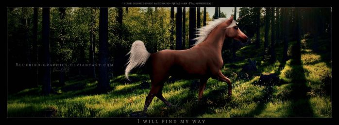 Ill Find My Way ll by BlueBird-Graphics