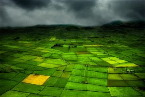 Green Azores by Ananyana