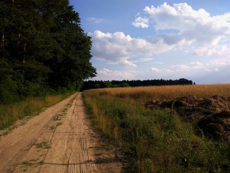 Dirt Road by Rdzeniuch