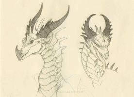 dragon sketches by terrible-beast