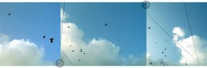 When I look up in the sky by raheel07