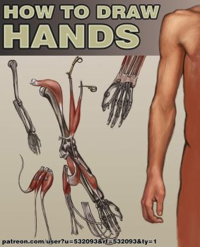 How to draw HANDS by Simulyaton