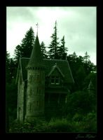 Little Castle By The Forest by Navanna