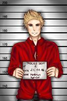 [APH] Denmark- 'Pose for your mugshot' by Ms-Filou