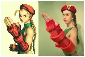 SF4 pose practice. by TheFineTrouble