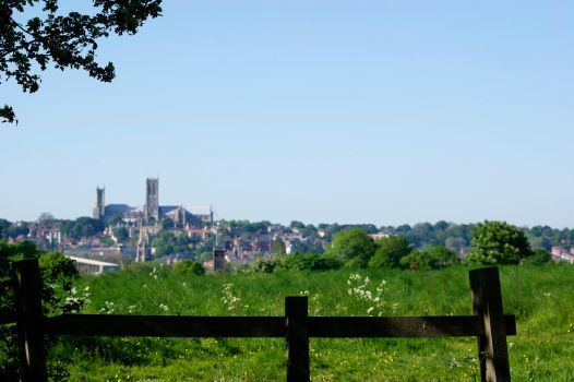 Lincoln Cathedral from the Common by soraneko