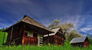 Old household Bukovina by lica20