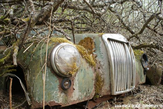 The Car Cemetery - Sweden by vargie