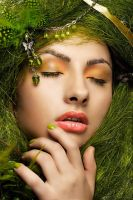 green by ColorBox-STUDIO