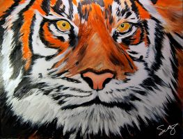 Sumatran Tiger by dx