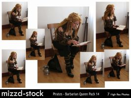 Pirates - Barbarian Queen Pack 14 by mizzd-stock