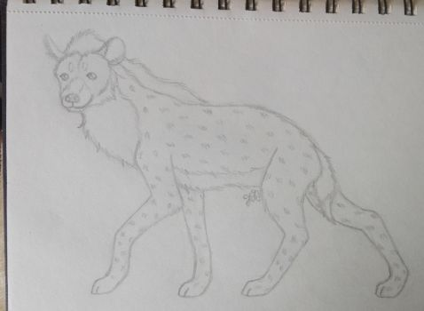 Sketch RQ Spotted Hyena by oOFrosteehOo
