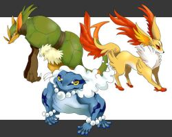 Pokemon : Generation 6 Starters Final Evolution by black60dragon