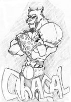 Thundercats Jackalman o Chacal by Wolf-Signs