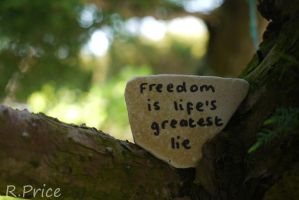 The Truth About Freedom by Rhiallom